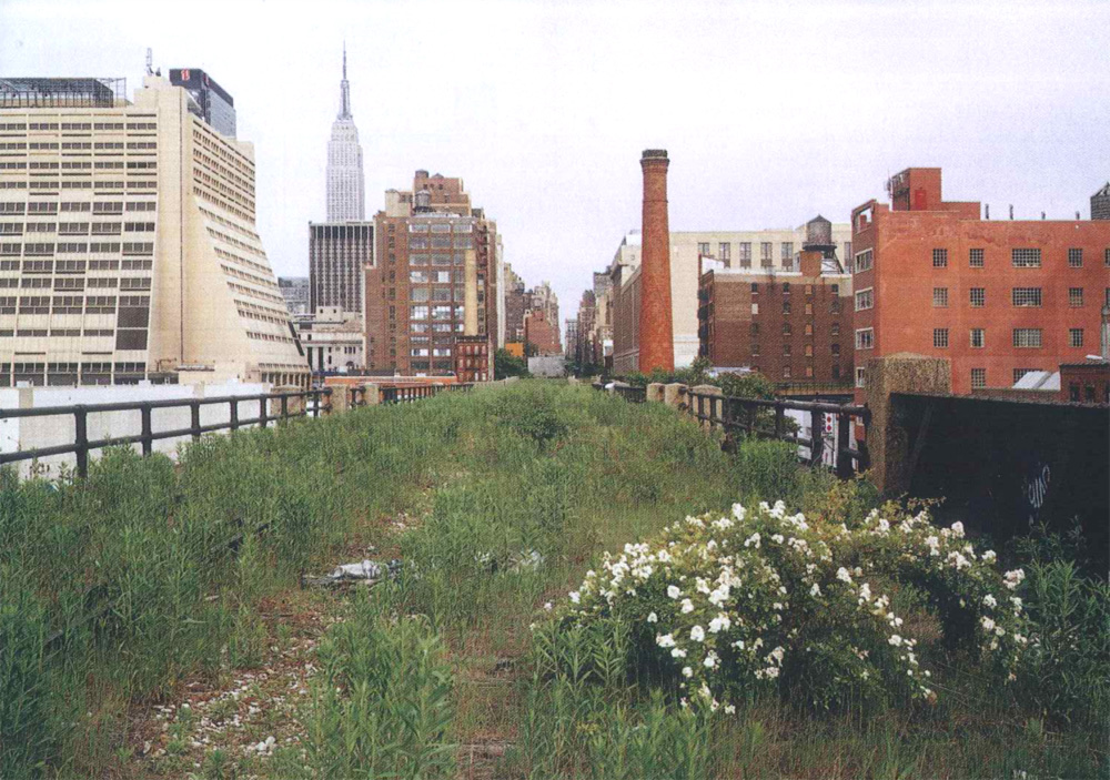 The high line in 2000, photographed by Joel Sternfeld
