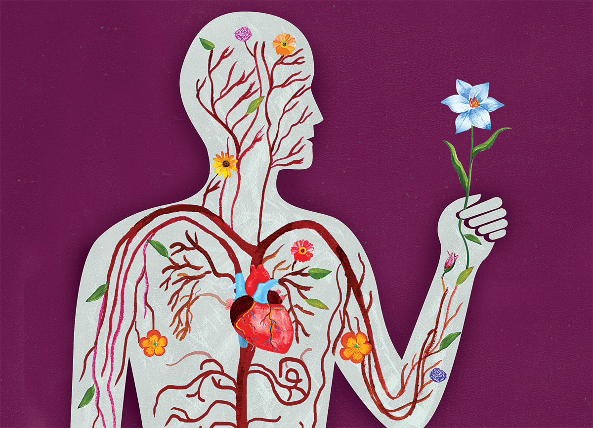 Anatomical illustration by Ellen Weinstein of flowers and plants running through the circulatory system