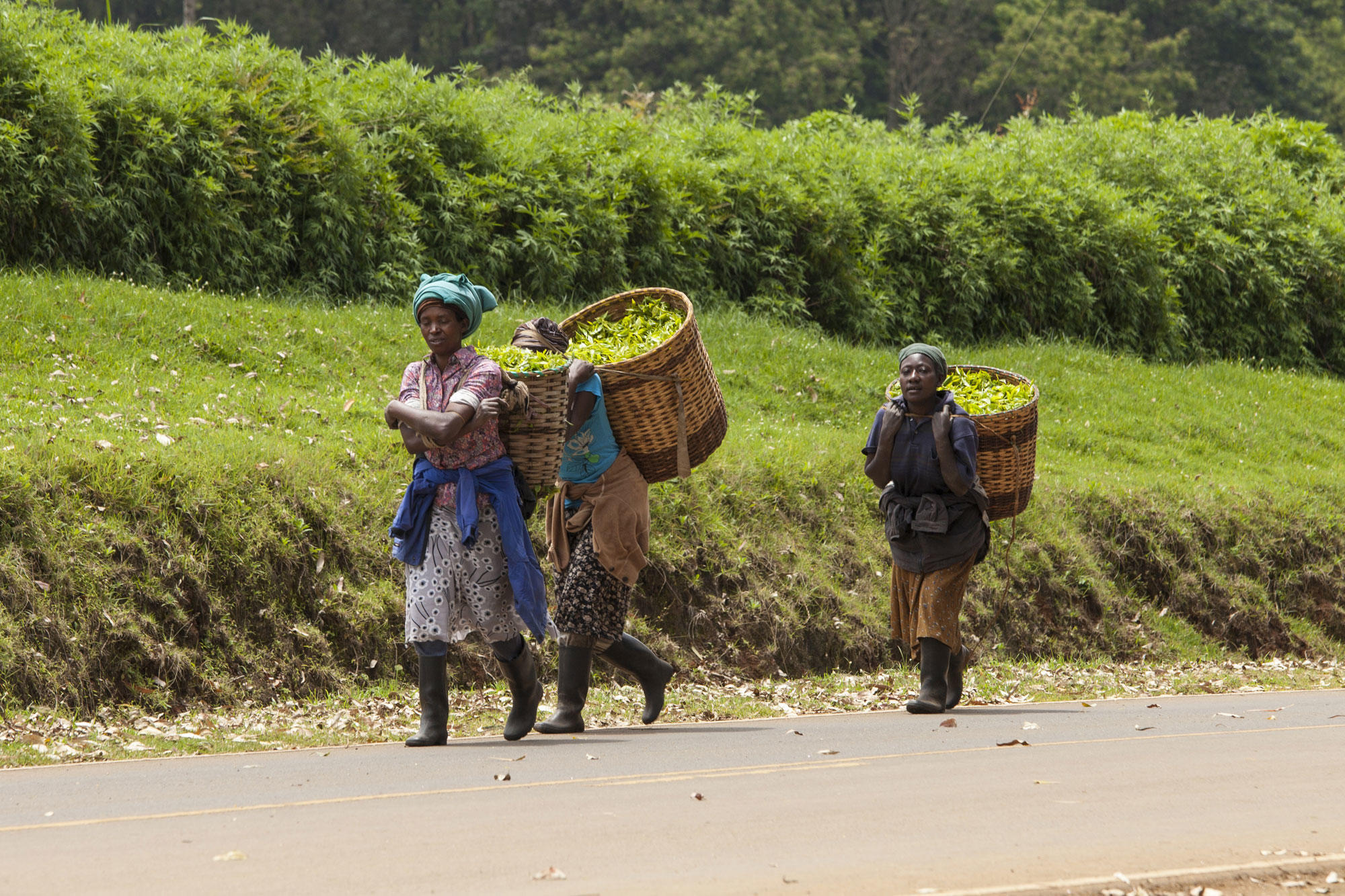Workers in Kenya