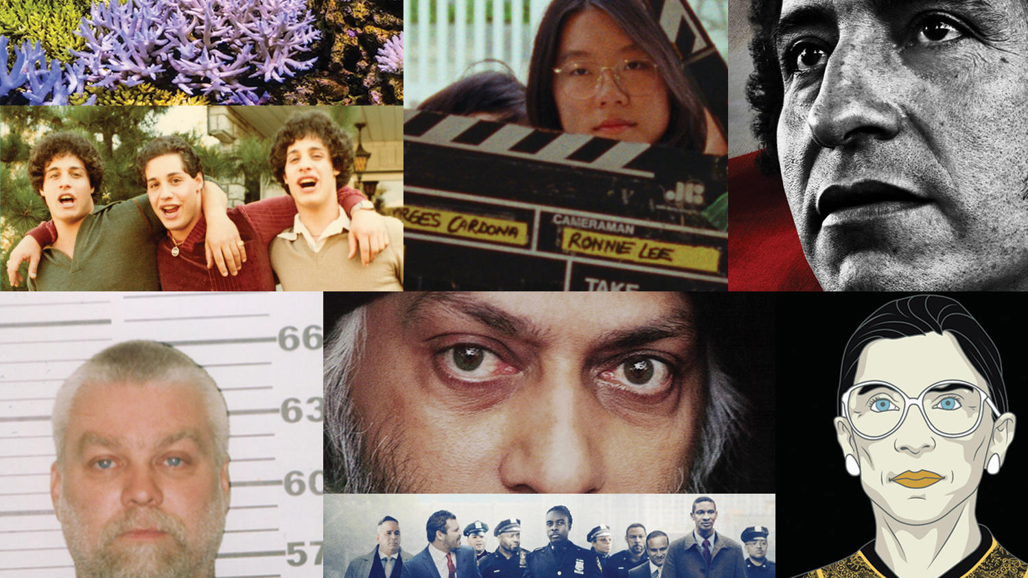 Documentaries made by Columbia alumni: Chasing Coral, Shirkers, ReMastered: ReMastered: Massacre at the Stadium, Three Identical Strangers, Wild Wild Country, RBG, Making a Murderer part 2, Crime + Punishment