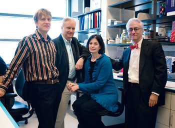 Stem-cell researchers Dieter Egli, Mark Sauer, Robin Goland, and Rudolph Leibel