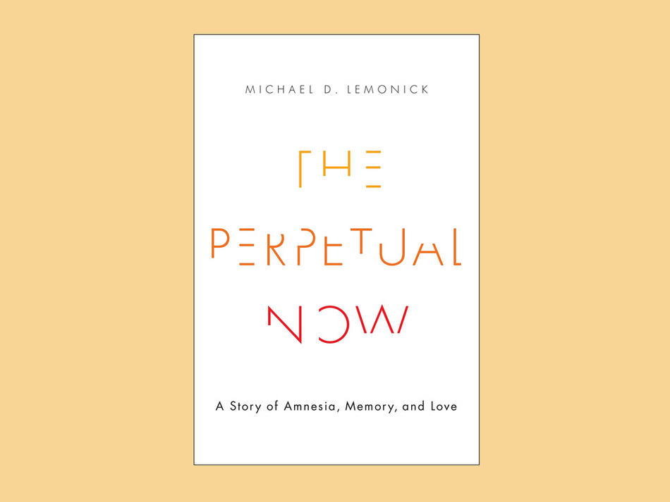 """The Perpetual Now"" cover"