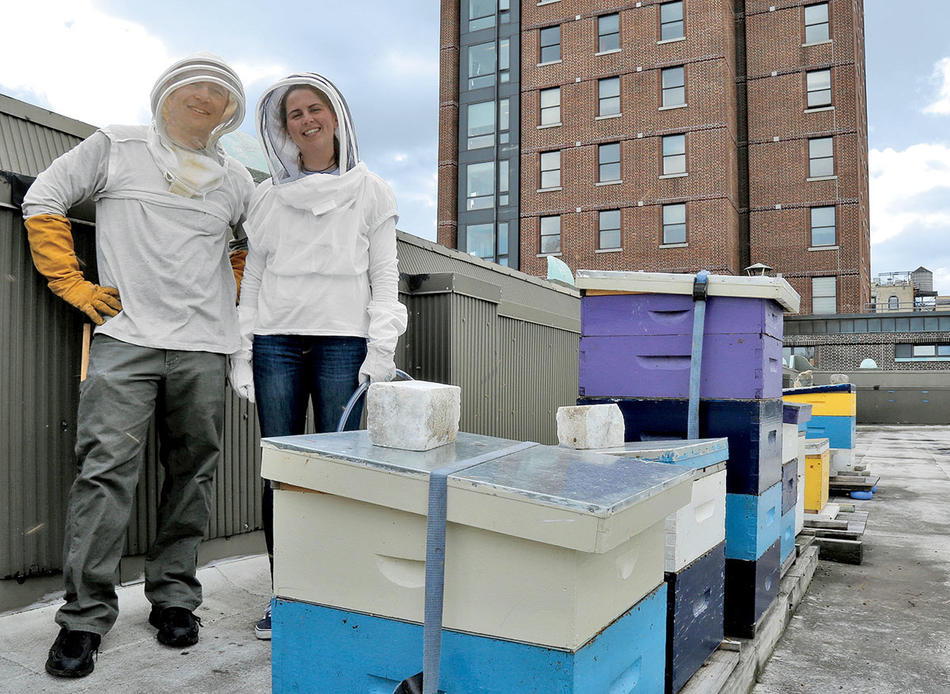 Jonathan Snow and a lab member at the bee colony on the roof of Barnard College